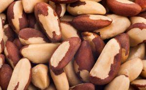selenium brazil nuts